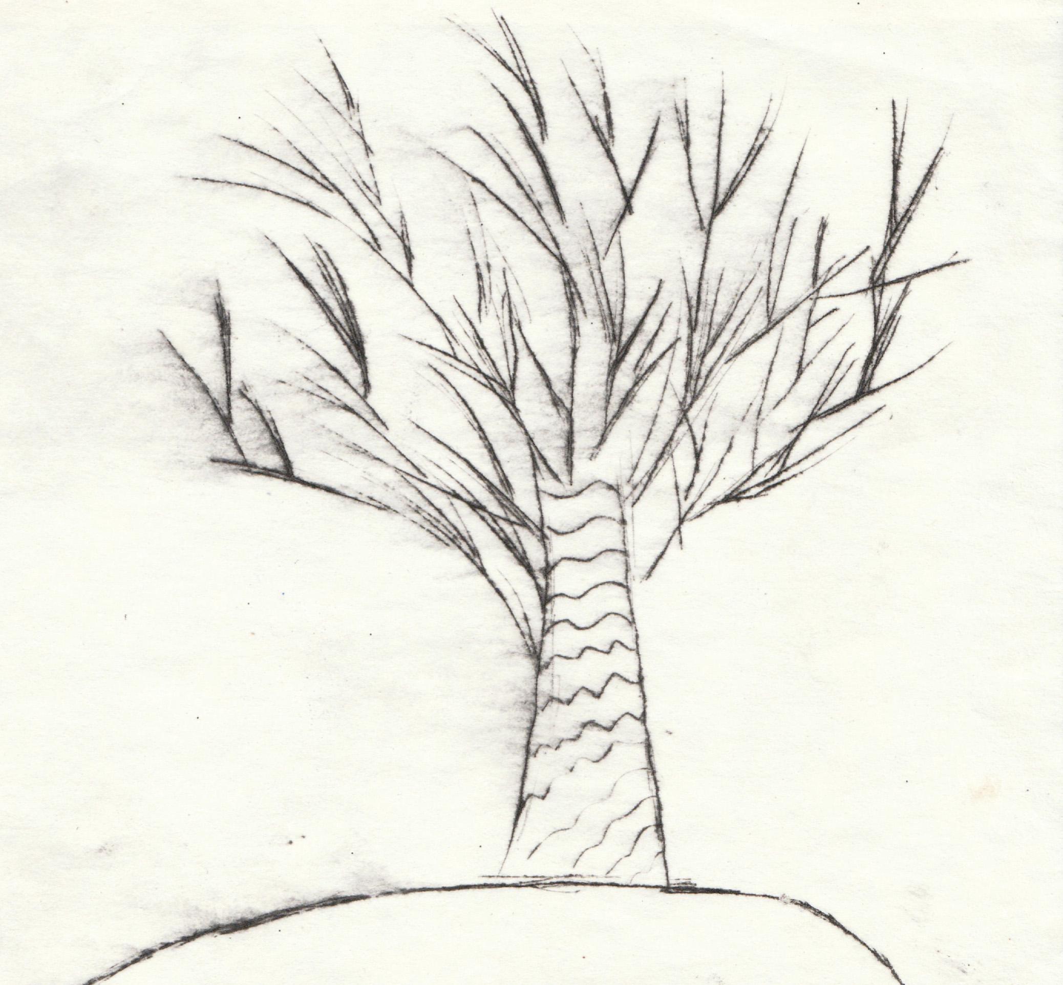 Zīmējumā ir attēlots koks bez lapām. Zīmējums ir lineārs, melnbalts.